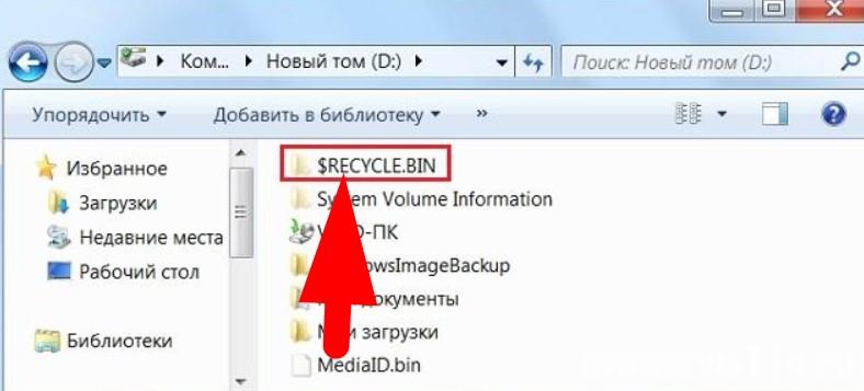 $RECYCLE.BIN что это за папка на Windows?