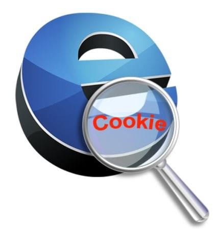 Что такое cookie файлы
