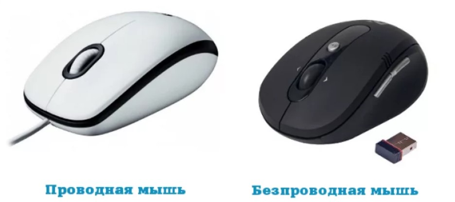 Что делать если не работает мышь на ноутбуке